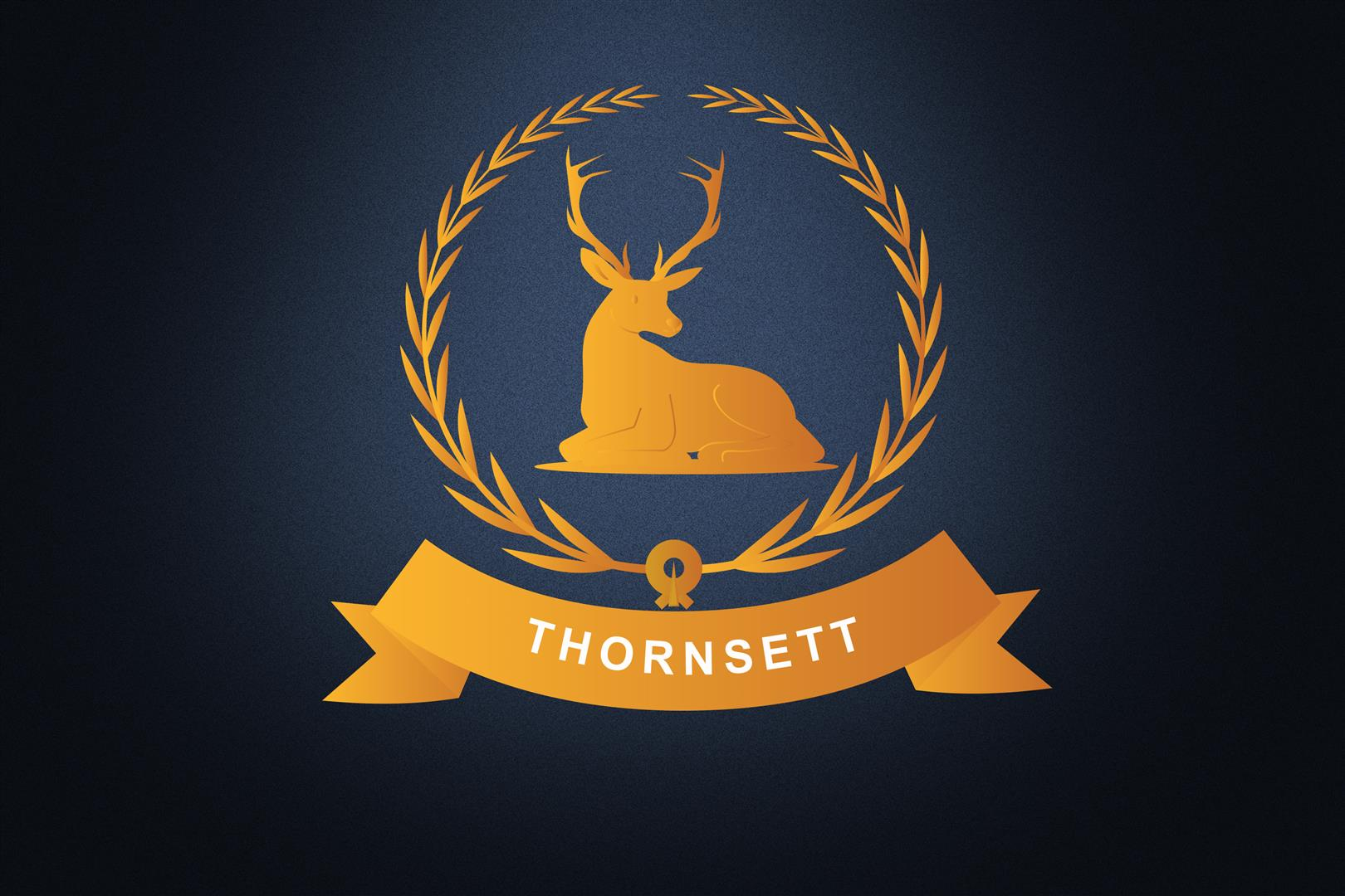 Thornsett Band Profile Pic