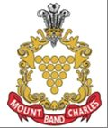Mount Charles Band Profile Pic